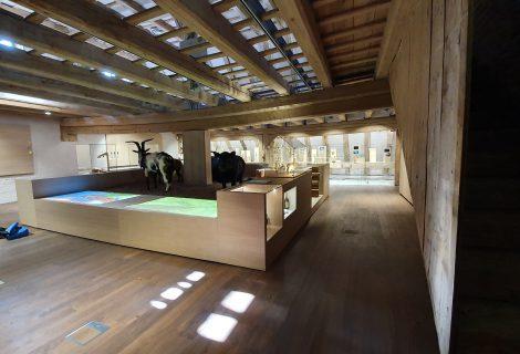 UPDATE: Sanierung Kastenhof Landau